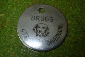 Détail d'un médaillon pour chien avec nom de la commune et numéro.